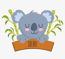 cute koala and safari sign vector