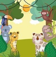 jungle safari animals vector
