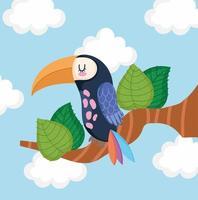 toucan bird on a branch vector