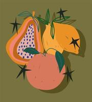 doodle contemporary tropical fruits leaves nature decoration vector