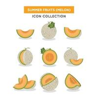 Melon Icon Collection vector