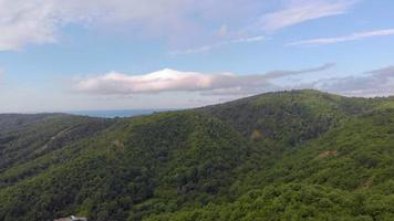 Forested Mountain Tops video