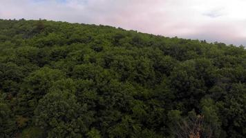 An Aerial Shot of A Forested Mount video