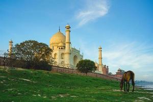 Taj Mahal in Agra, India photo