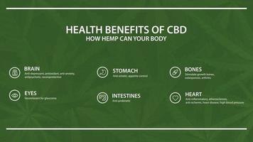 Green template with infographic of health benefits of CBD from cannabis, hemp, marijuana vector