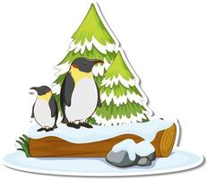 Two penguins stand by pine tree covered with snow sticker vector