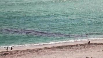 oil gas pollution gasoline disaster sea beach HD video footage