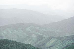 imagen panorámica del paisaje de la selva tropical verde fresca y el fondo de la montaña. foto