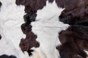 Brown cow skin coat with fur black white and brown spots photo
