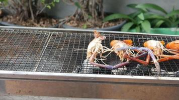 Closeup some river prawns grilled on the iron rack over the charcoal. video