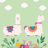 sweet llamas pair vector