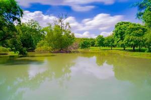 Árbol verde en un hermoso parque bajo un cielo azul con reflejo en el agua foto