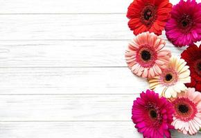 Bright gerbera flowers on a wooden background photo