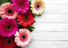Bright gerbera flowers on a white wooden background photo