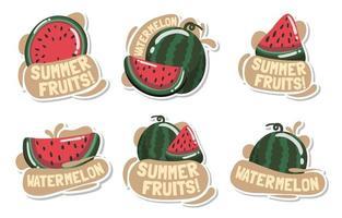Summer Fruits Watermelon Sticker Collections vector