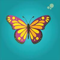 butterfly with colorful wings and antennae. insect. vector illustration