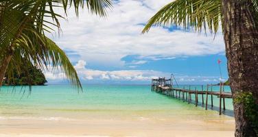 Hermosa playa tropical y mar con palmeras de coco bajo un cielo azul foto