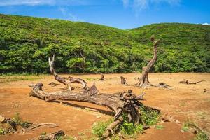 paisaje de estanque celestial, también conocido como datienchih o duwawa, en taitung, taiwán foto