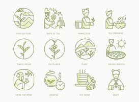 birth of Chinese tea icons set vector