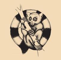 Hand Drawn Lemur Illustration Design vector