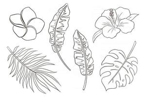 Line Art Tropical Flowers and Leaves Vector Isolated Items Collection