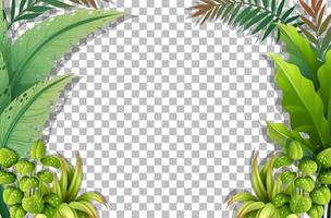 Tropical leaves frame template vector