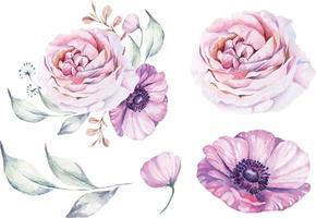 Elegant watercolor rose composition vector