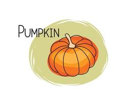 Pumpkin icon. Full fruit pumpkin isolated on white background with lettering Pumpkin. Vegetable stylish drawn symbol Pumpkin vector