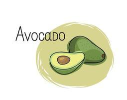 Avocado icon. Half and full fruit avocado isolated on white background with lettering Avocado. Vegetable stylish drawn symbol avocado vector