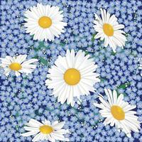 Floral pattern. Flower chamomlie seamless background. Flourish ornamental garden vector