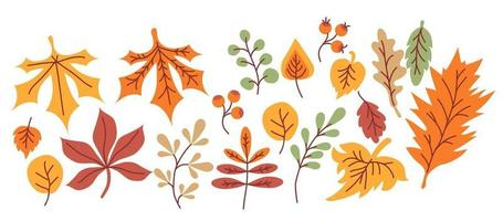 Vector set of autumn drawings. Colored various leaves and branches, berries, acorns and mushrooms, an umbrella and a cloud with rain. Use for fall design and decoration. Cozy bright autumn. isolated