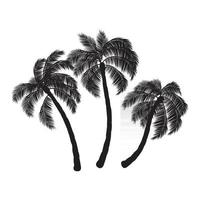Coconut palm trees vector