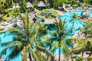 palmera de coco alrededor de la piscina foto