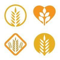 Leaf logo images vector
