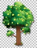 Pear tree isolated on background vector