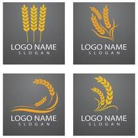 agricultura trigo logo plantilla vector icono diseño