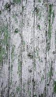 Silver wood background photo