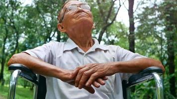 Happy Senior Man in A Wheelchair Enjoying Nature video