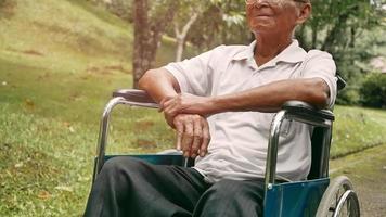 Happy Senior in A Wheelchair Enjoying Nature video