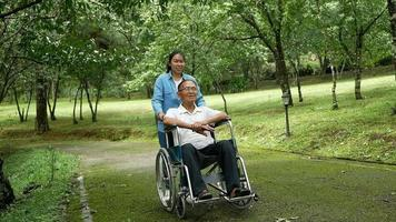 Grandfather in A Wheelchair Enjoying Nature in The Park video