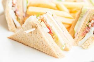Club sandwiches in white plate photo