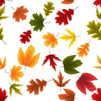 Autumn Natural Leaves Seamless Pattern Background. Vector Illustration