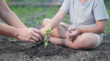 liten ungehand och förälder som planterar växande träd i jord på trädgården tillsammans. barn och mor planterar unga träd för hand på morgonen. skogsmiljöer jorddag och nytt livskoncept. slow motion video
