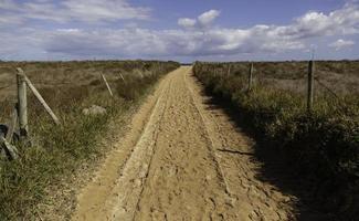 camino de arena a la playa foto