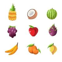 Fresh Colorful Summer Fruit Icon vector