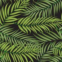 Green Palm Tree Leaf Silhouette Seamless Pattern Background Vector Illustration