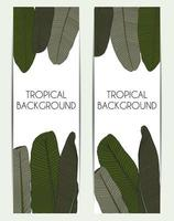 Palm Tree Leaf Tropical Silhouette Background Vector Illustration