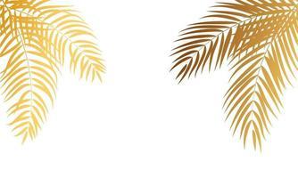 Gold Palm Tree Leaf Silhouette Background Vector Illustrat