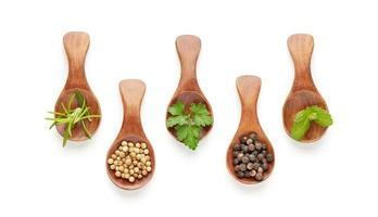Set of spoons with different spices and culinary herbs isolated on white background. Top view photo