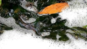 River flow polluted with foam chemical waste video